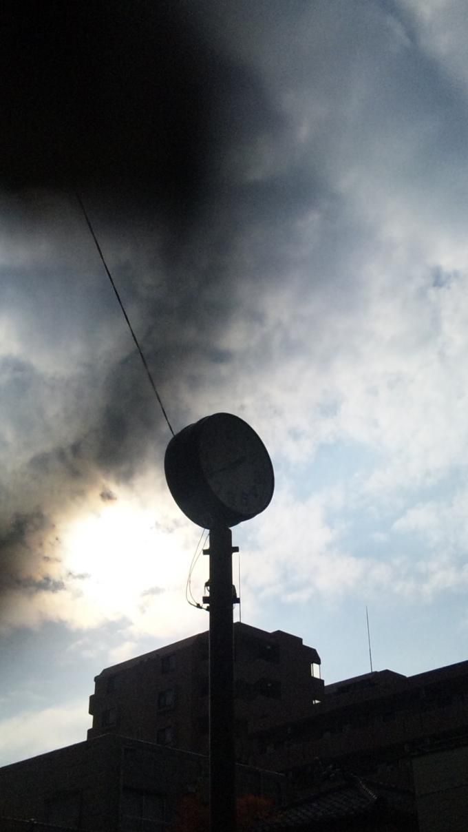 SUN_20101202
