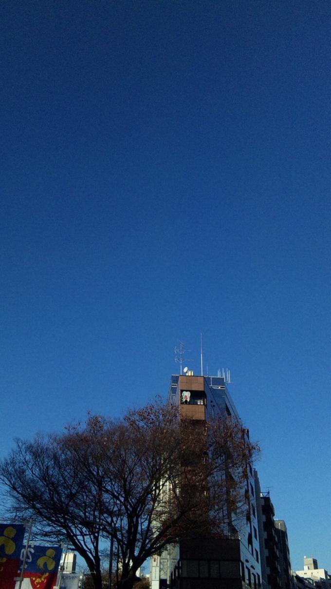 BLUE SKY In Harajuku_20101204