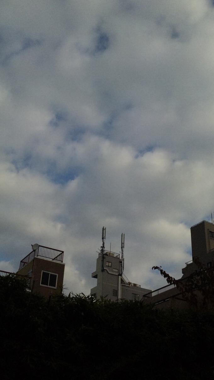 Mornig Sky_20101206