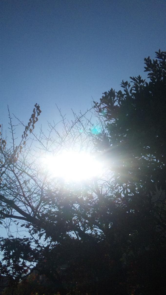 SUN_20101209