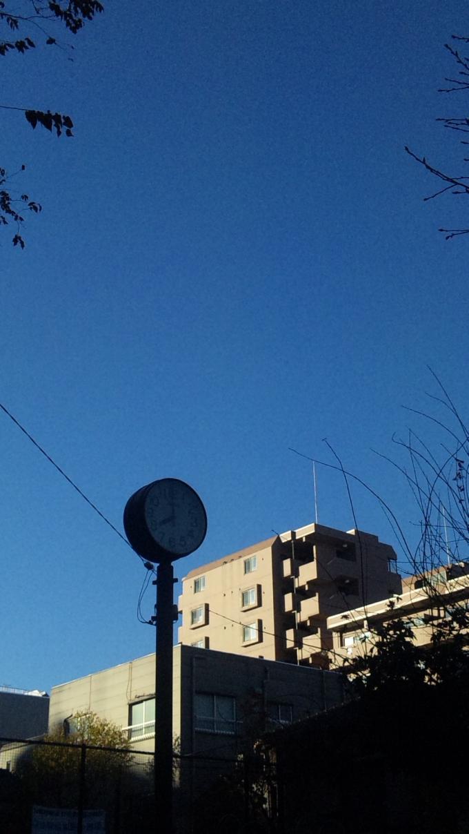 BLUE SKY_20101210