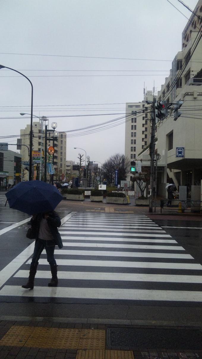 COLD RAIN_20101213