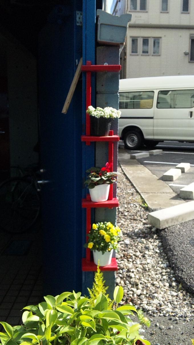 Flowers_20120325