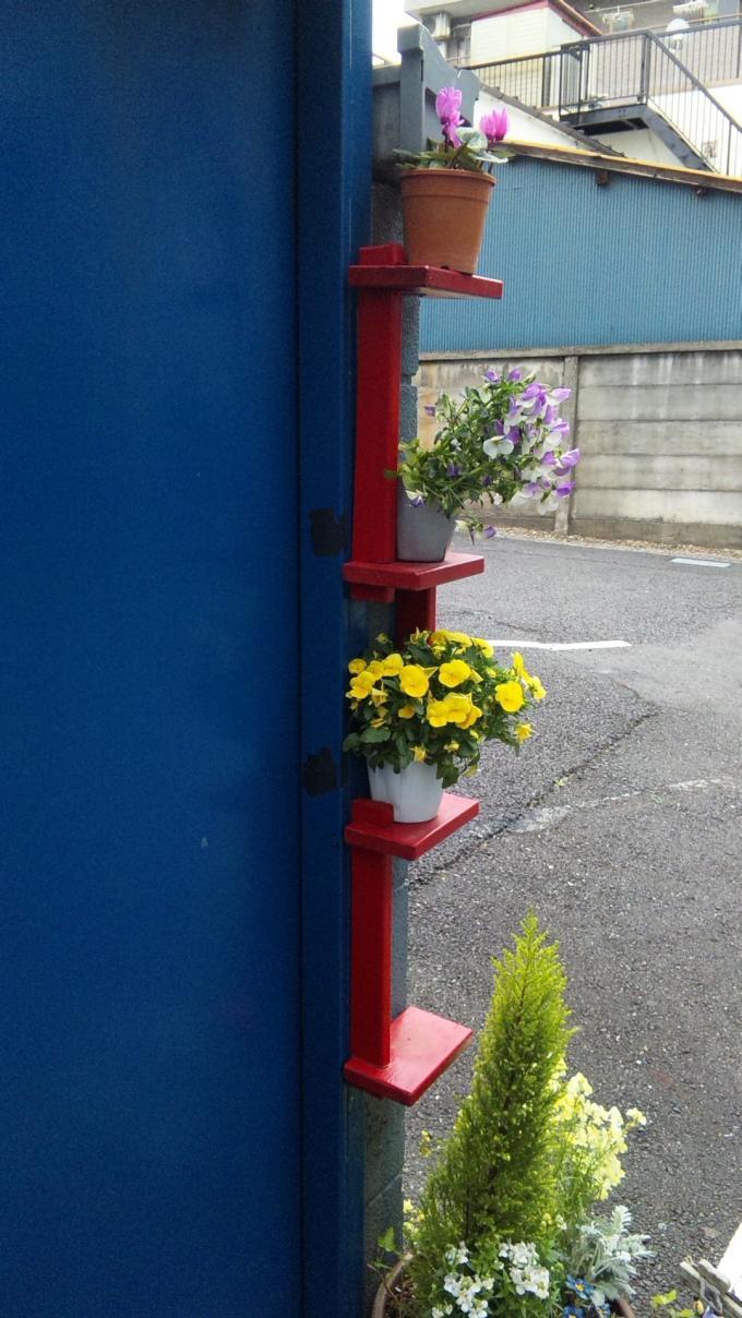 Flowers_20120420