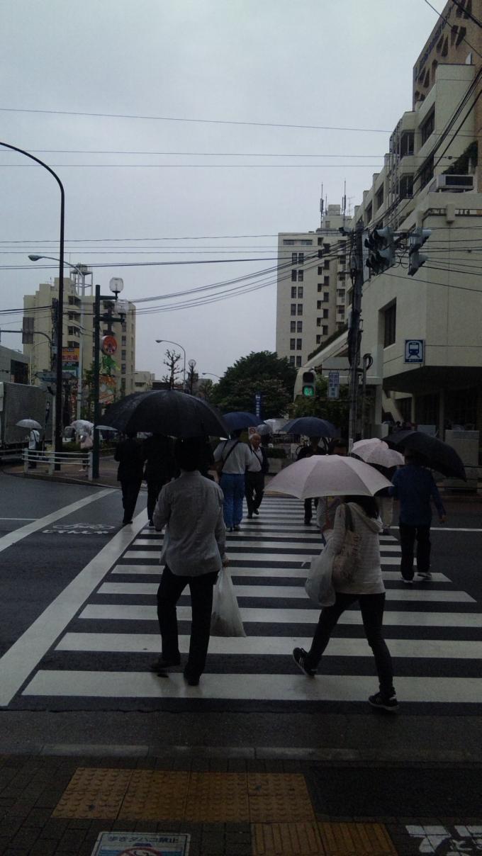 RAIN_20120502