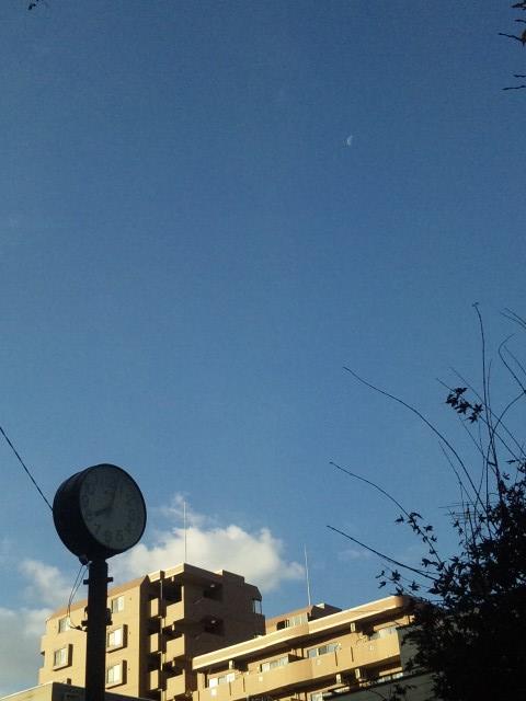 BLUE  SKY _20101129