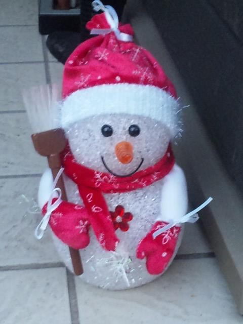 Snow Man_20101129