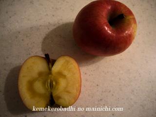 apple2010-1.jpg