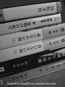 book2010-1.jpg