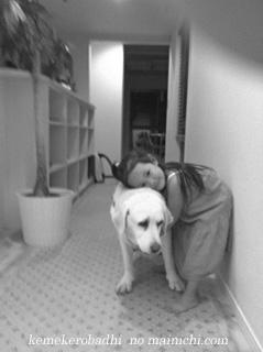 kemel2011-12.jpg