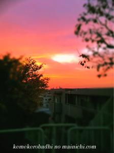 sunset2010.jpg