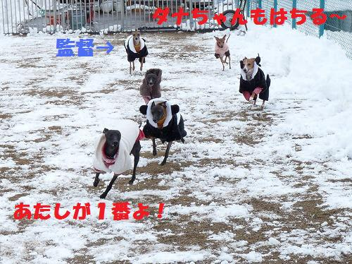 yuki13 (2)
