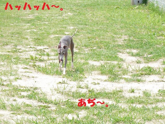 jyun7.jpg