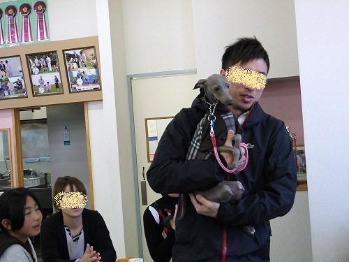 pp10_20101220152754.jpg