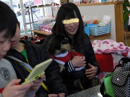 pp12_20101220153123.jpg