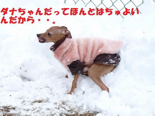 yuki23.jpg