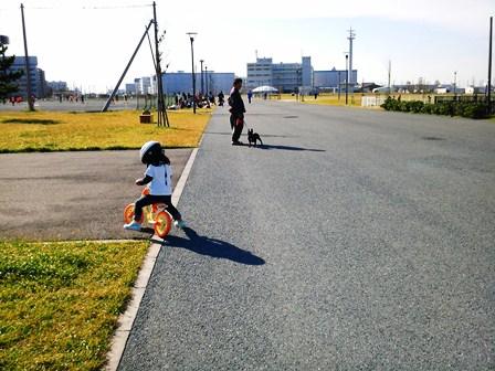 20121113_17.jpg