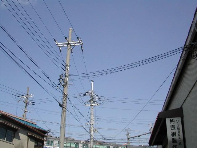 DSCN9546.jpg