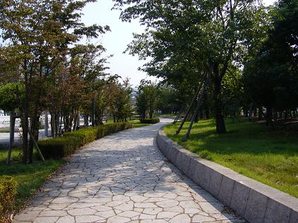 記憶の回廊