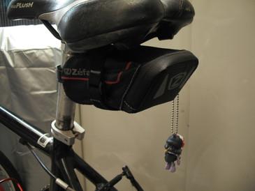 cycle25.jpg