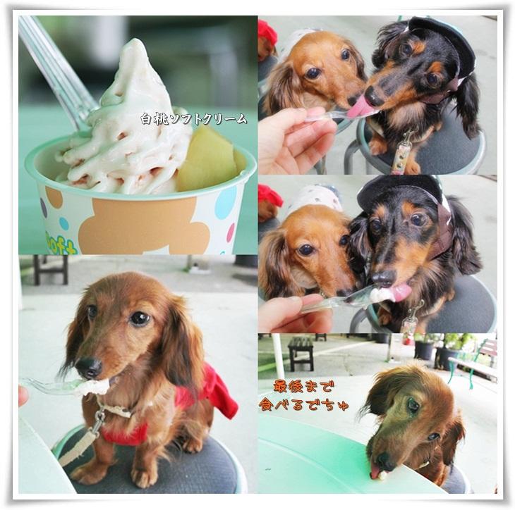 白桃ソフトクリーム