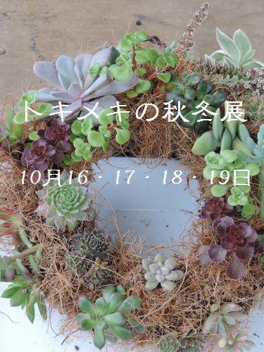 tokimeki_201410141600259b5.jpg
