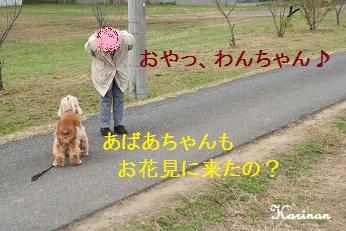 ブログ 10.25 ③ IMG_7383
