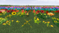 flower_ctm03_20140104015237360.png