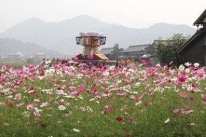 香川県 プリザーブドフラワー
