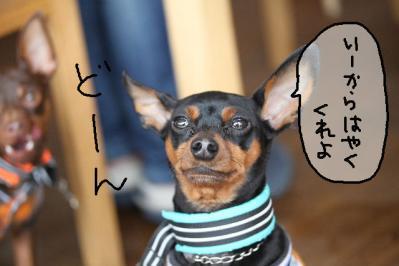 2012_02_25_9999_29.jpg