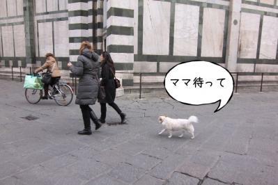 2012_02_29_9999_325.jpg
