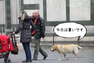 2012_02_29_9999_332.jpg