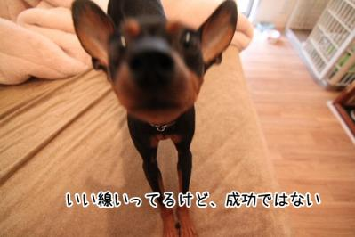 2012_03_05_9999.jpg
