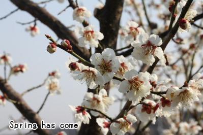 2012_03_28_9999_1.jpg
