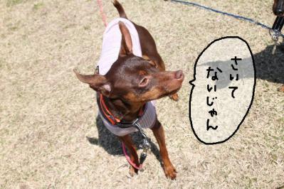 2012_04_08_9999_12.jpg