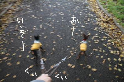2012_05_04_9999_25.jpg