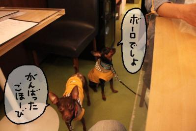 2012_05_04_9999_39.jpg
