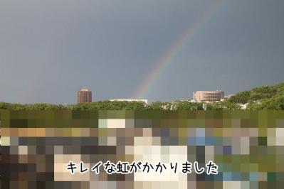 2012_05_06_9999_11.jpg