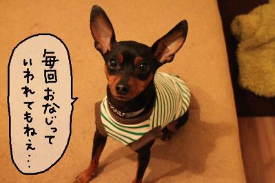 2012_05_15_9999_8.jpg