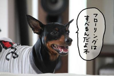 2012_05_20_9999_49.jpg