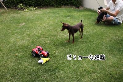 2012_05_20_9999_6.jpg