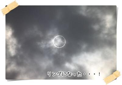 2012_05_21_9999_86.jpg