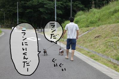 2012_05_26_9999_10.jpg