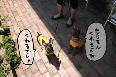 2012_05_27_9999_111.jpg