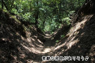 2012_05_27_9999_51.jpg