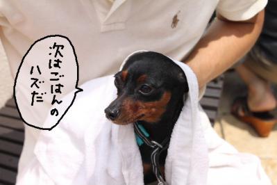2012_07_29_9999_144.jpg
