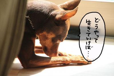 2012_10_02_9999_10.jpg