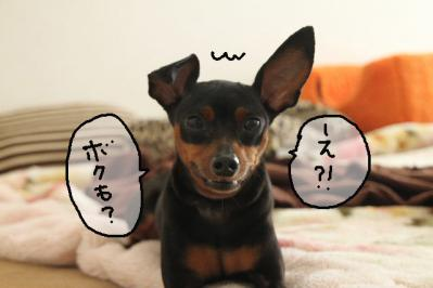 2012_10_02_9999_14.jpg