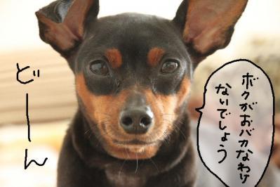 2012_10_02_9999_16.jpg