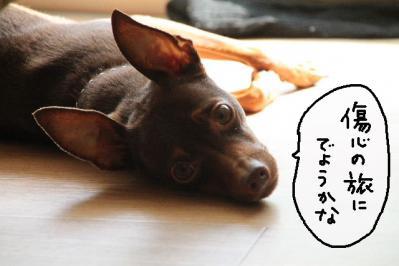 2012_10_02_9999_24.jpg